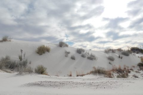 sand dune in White Sands