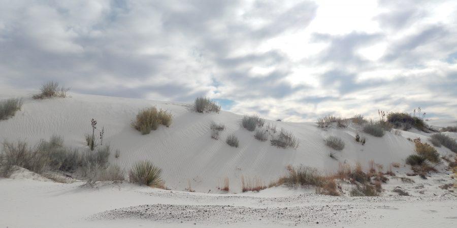 sand dune in White Sands